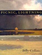 Picnic_light